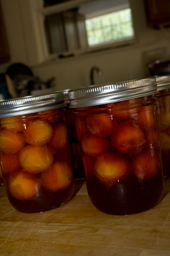 plums that have been canned raw