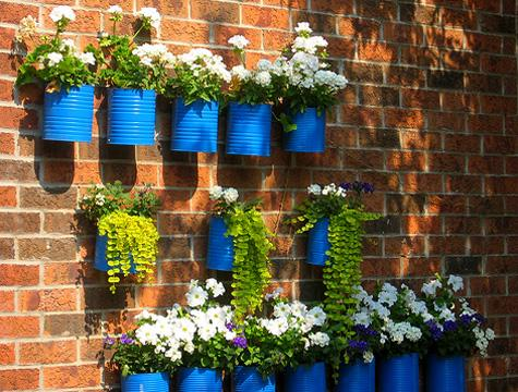 bright blue tin can flower planters hang on a brick wall