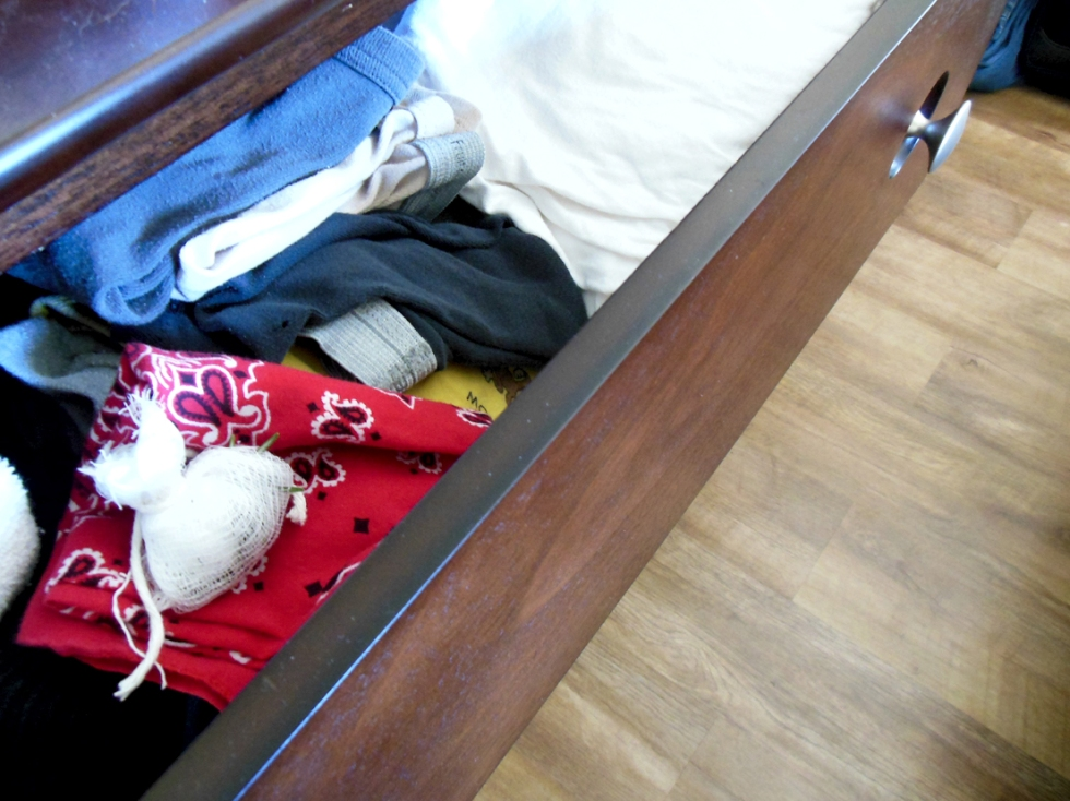 a sachet of rosemary sits in an underwear drawer